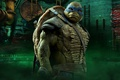 Picture cinema, film, yuusha, Teenage Mutant Ninja Turtles, movie, ninja, TMNT, Leonardo, hero, shinobi, bysachso74