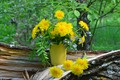 Picture flowers, summer, bouquet, dandelions, nature
