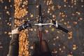 Picture autumn, girl, bike, pavers, Rona Keller