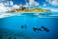 Picture divers, landscape, scuba, travel, underwater world, corals, wetsuit, blur, diving, bokeh wallpaper., diving, island, the ...