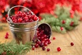 Picture cranberry, branches, needles, Board, bucket, berries