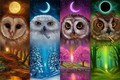Picture the moon, keys, owls, Keepers of the keys