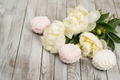 Picture marshmallows, valentine`s day, wood, peonies, white, romantic, buds, peonies, flowers