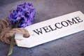 Picture the inscription, welcome, rope, Hyacinths, sprig, plate, composition, background, hyacinth, flowers