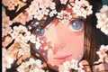 Picture branches, face, spring, Sakura, girl, blue eyes, flowering, art, Ma Jo