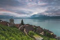 Picture lake, Switzerland, Lake Geneva, Vaud, Saint-Saphorin