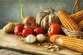 Picture corn, tomatoes, cuts, still life, pumpkin, potatoes, bow
