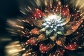 Picture drops, fly, glare, flower, flight, brown, flower, line, white, digital art, fractal, red