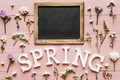 Picture flowers, background, pink, spring, pink, flowers, spring, purple