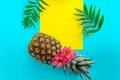 Picture leaves, flowers, background, coconut, pineapple