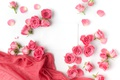 Picture roses, buds, pink, flowers, romantic, roses, valentine`s day