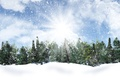 Picture clouds, the sky, the sun, snowflakes, trees, winter, snow, rays, the snow