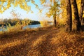 Picture Autumn, Trees, River, Fall, Foliage, Autumn, Colors, River, Trees, Falling leaves, Leaves