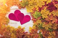 Picture autumn, leaves, love, heart, red, love, heart, wood, autumn, leaves, romantic, autumn, maple