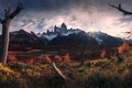Picture South America, autumn, the sun, the Andes mountains, light, Patagonia, birds