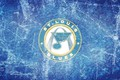 Picture ice, wing, emblem, note, NHL, NHL, St. Louis Blues, St. Louis Blues, hockey club