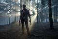 Picture cinema, film, Logan, blood, X-Men, Hugh Jackman, assassin, Wolverine, movie, forest, Marvel, hitokiri, man