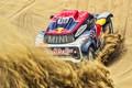 Picture Sand, Mini, Sport, Desert, Speed, Rally, Dakar, Dakar, Rally, Buggy, Buggy, X-Raid Team, 310, MINI ...