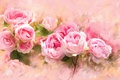 Picture petals, pink, strokes, rose, pink, roses, painting, drawing, background, gently, picture, lush, buds, drawn, imitation ...