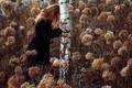 Picture girl, nature, birch