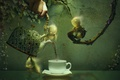 Picture leaves, branches, graphics, hand, men, kettle, the tea party, Cup, ivy