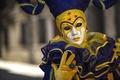 Picture mask, costume, carnival