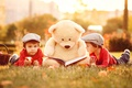 Picture bear, apples, the sun, bear, book, Teddy, apple, children, boys, stay, boys, children, toy