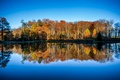 Picture lake, woodland, mirror