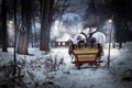 Picture winter, horses, boy, sleigh