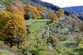 Picture Provence-Alpes-Cote d'azur, autumn, trees, France, mountains, house, Coursegolf