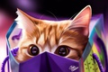 Picture cat, cat, package, by Khushiart