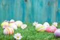 Picture grass, Easter, Easter, flowers, the painted eggs, Happy, spring, eggs, flowers