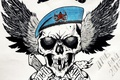 Picture Airborne, takes, skull, MTR about, winged infantry, DMB