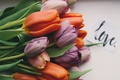 Picture bouquet, tulips, buds, flowers