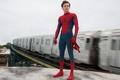Picture logo, yuusha, spider, uniform, boy, mask, Tom Holland, Columbia Pictures, seifuku, Spiderman, cinema, film, Sony ...