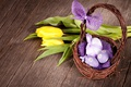 Picture decoration, wood, Easter, Easter, tulips, tulips, basket, Happy, spring, eggs
