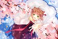 Picture flowers, wings, angel, spring, girl, Card Captor Sakura, Sakura - collector cards