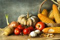 Picture corn, tomatoes, cuts, still life, pumpkin, potatoes, bow