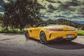 Picture car, Roadster, Mercedes, logo, yellow, vegetation, Mercedes Amg, Mercedes Amg Gt Roadster, Mercedes Amg Gt