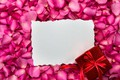 Picture flowers, gift, roses, frame, petals, silk, pink, fresh, pink, flowers, beautiful, romantic, silk, gift, petals, ...