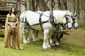Picture Legend of the Seeker, horse, Legend of the Seeker, Bridget Regan, horse, Kahlan Amnell, Kahlan ...