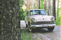 Picture forest, old car, greens, Muscovite, film, mzma, 403, car, nature, old school, nursery, retro