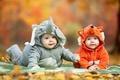 Picture costume, autumn, Infants, Foxes, Elephants, child, kids, children, look