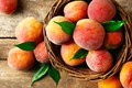 Picture leaves, basket, fruit, peaches