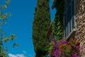 Picture Provence-Alpes-Cote d'azur, Nature, France, France, Bormes les Mimosas, Nature, Bormes-Les-Mimosas