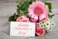 Picture gerbera, heart, love, flower, valentine`s day, orange, pink, romantic
