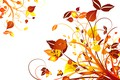 Picture vector, abstract, background, floral