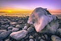 Picture sea, sunset, stones, coast, ice, Sweden, Sweden, Torö, Nynäshamn