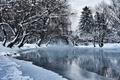 Picture pond, Sarajevo, water, Bosnia and Herzegovina, trees, winter, snow, Park