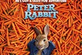Picture Peter Rabbit, rabbit, carrots